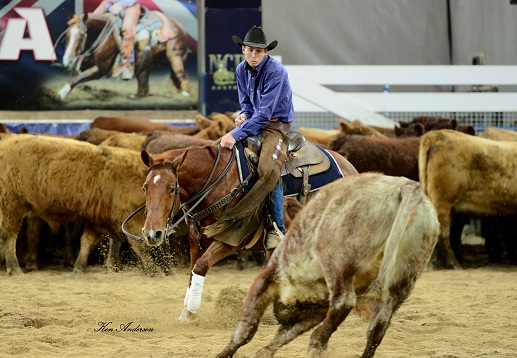 "2017 NCHA Open Futurity Co-Champion – ""TP Dancin In the Reyn"""