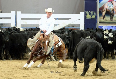 Pete & Harry make the NCHA 2017 Amateur Finals!